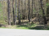 Carthage Park Trail